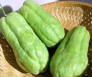 Chayote vegetable